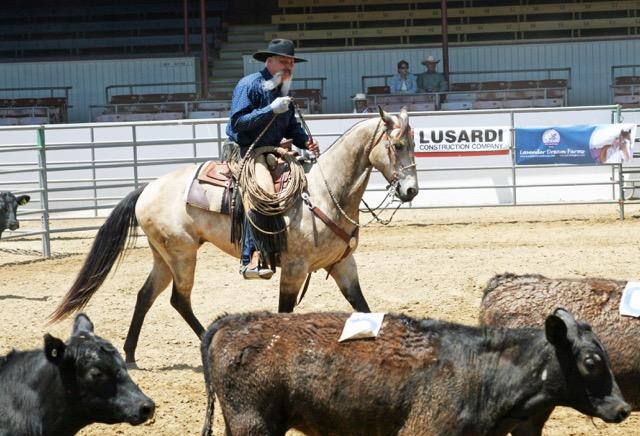 La tradition des vaqueros californiens