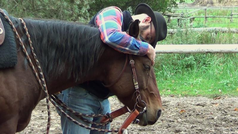 N'ayez pas peur d'aimer votre cheval