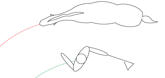 Exercises - Groundwork - Bend the horse's body along a full circle