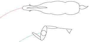 Exercises - Groundwork - Parallel position to lunge a horse for respect