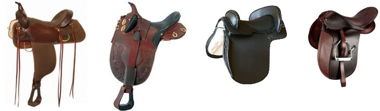 Equipment - Saddle is a matter of personal preference