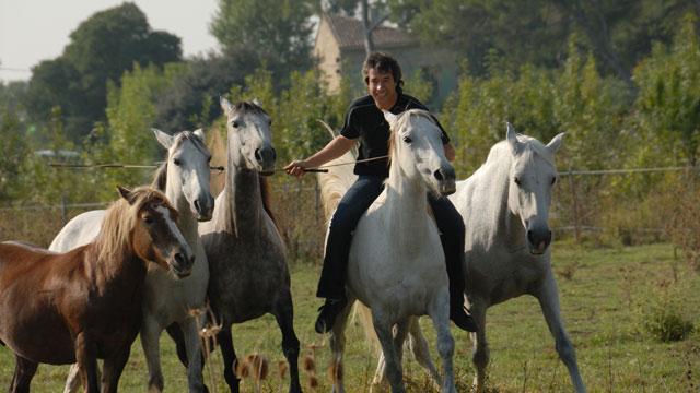 Horseman Jean-François Pignon