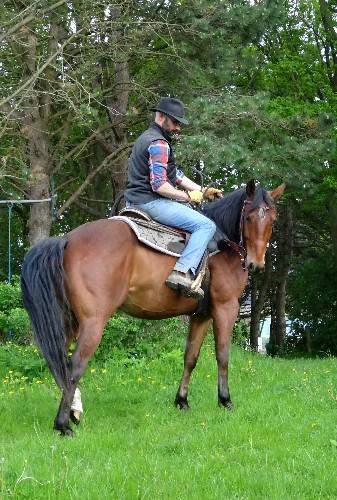 Good horsemanship consists of principles